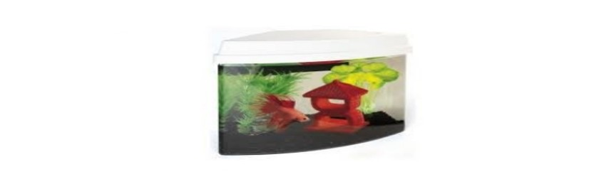 Superfish Aquariums & Stands