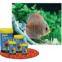 Aqua One Specialist Fish Food