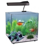 Aqua One AquaNano 40 Tropical Glass Aquarium