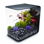 BiOrb Flow 15 Aquarium  with LED Light Black