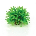 BiOrb Topiary Ball Plant Green 46087
