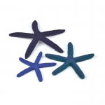 BiOrb Starfish Set 3 per pk Blue 46143