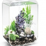 BiOrb LIFE 45 Aquarium with MCR LED Clear